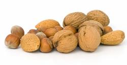 Omega 3 fatty acids foods